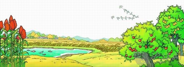 秋天的图画 课文图片 二年级 语文 沪江小学资图片