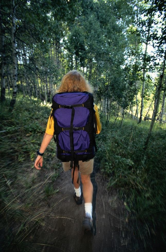 森林中徒步