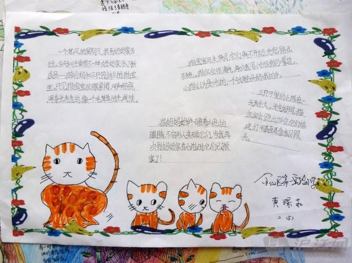 小学自然笔记:如何让孩子快乐地走进自然笔记?