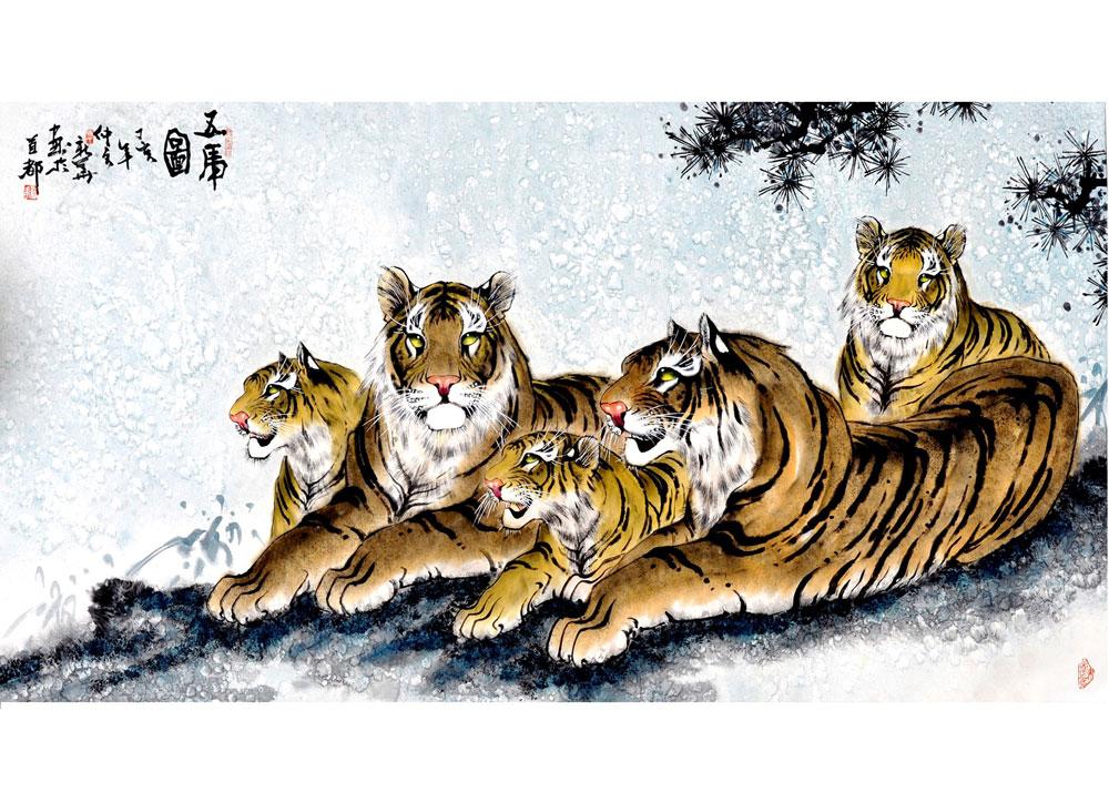 华南虎图片素材03