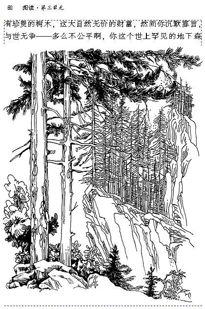 森林简笔素描画