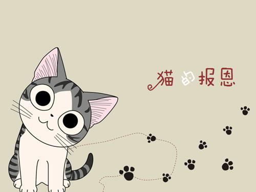 超萌猫咪卡通头像