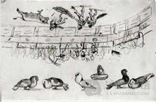 和平鸽你找到了吗?   提到毕加索,就等于提到了立体主义. 高清图片