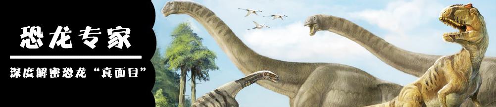恐龙专家——揭秘你所不知道的恐龙世界