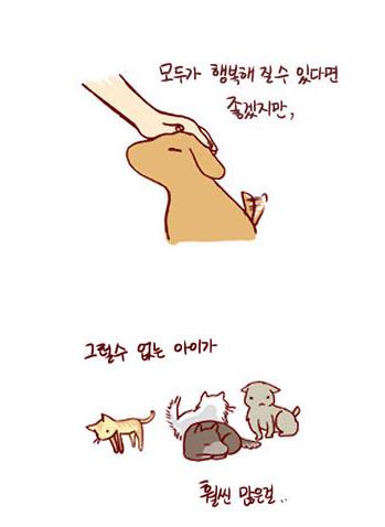 看韩语学漫画:《我的小猫和老狗》之给你找个漫画教主图片