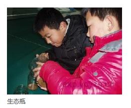 己做个年级瓶_五小学资源v年级_沪江名师生态泡小学生图片