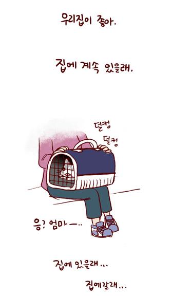 看漫画学韩语:《我的小猫和老狗》之