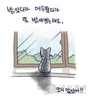 """看漫画学韩语:《我的小猫和老狗》之"""""""
