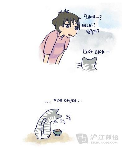 可爱 韩语怎么说