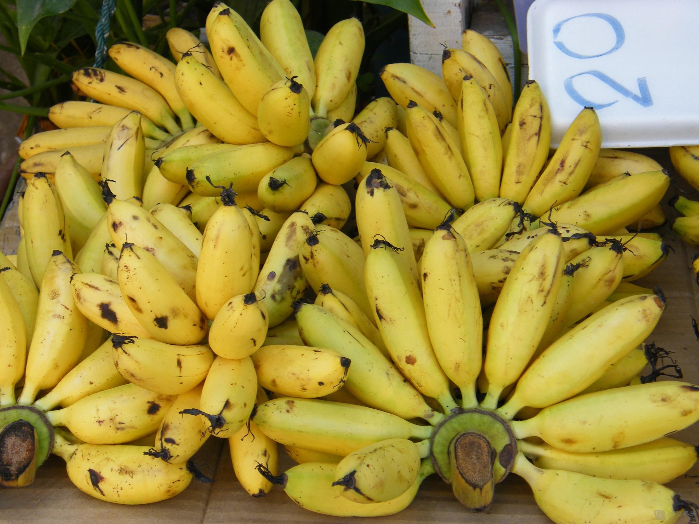 泰国十大令人发胖的超级水果