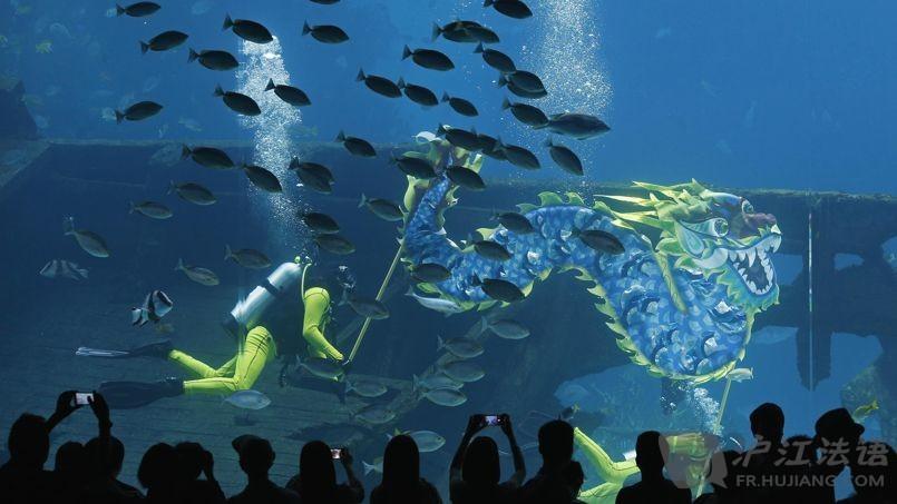壁纸 海底 海底世界 海洋馆 水族馆 桌面 805_453