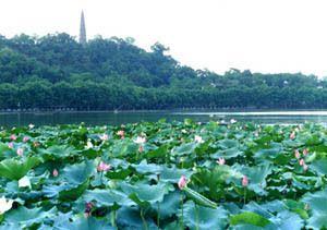 杭州未来世界公园