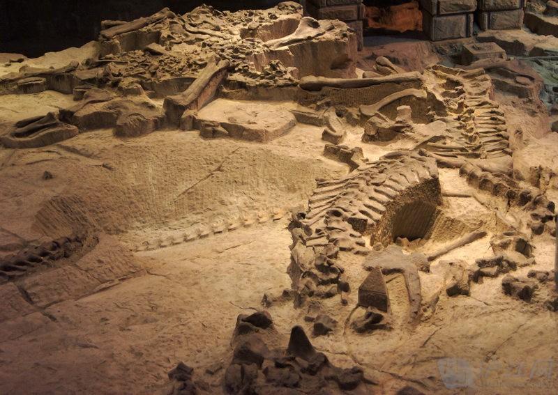 四川自贡恐龙博物馆