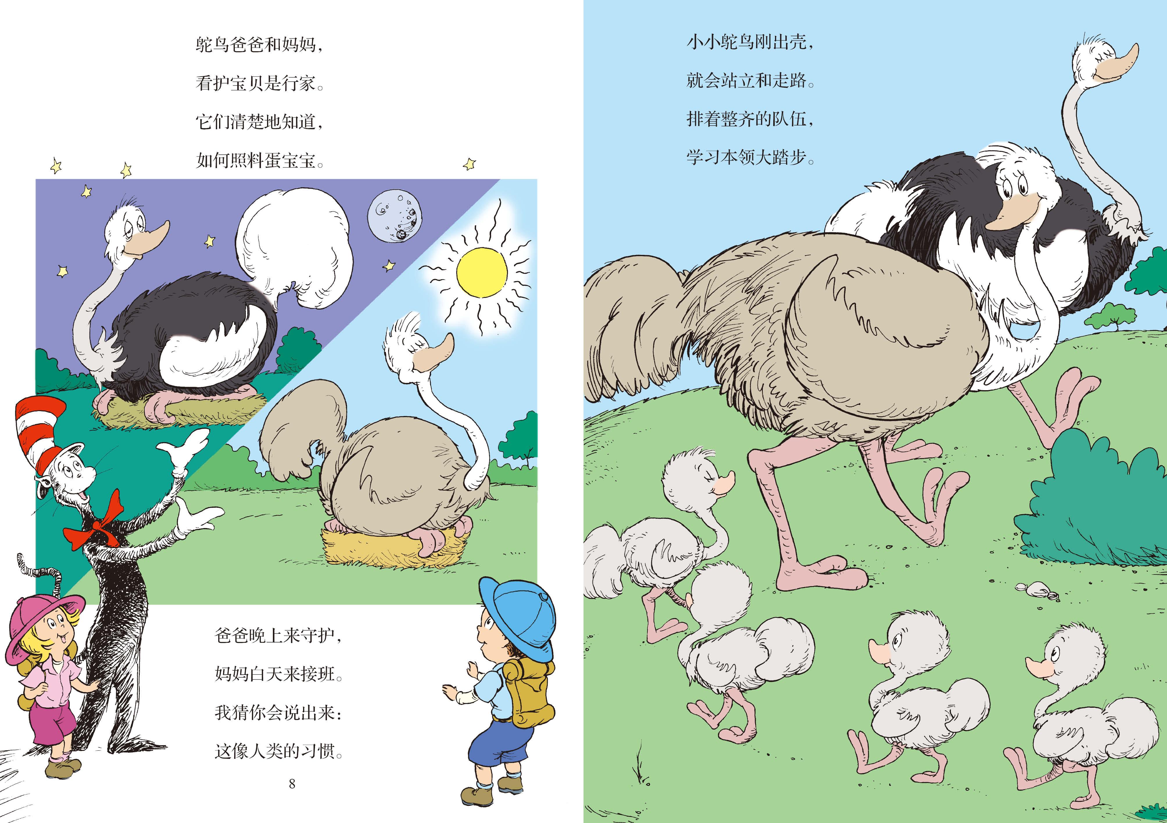 动物宝宝探访记:野生小动物的知识_3-6岁学龄前亲子