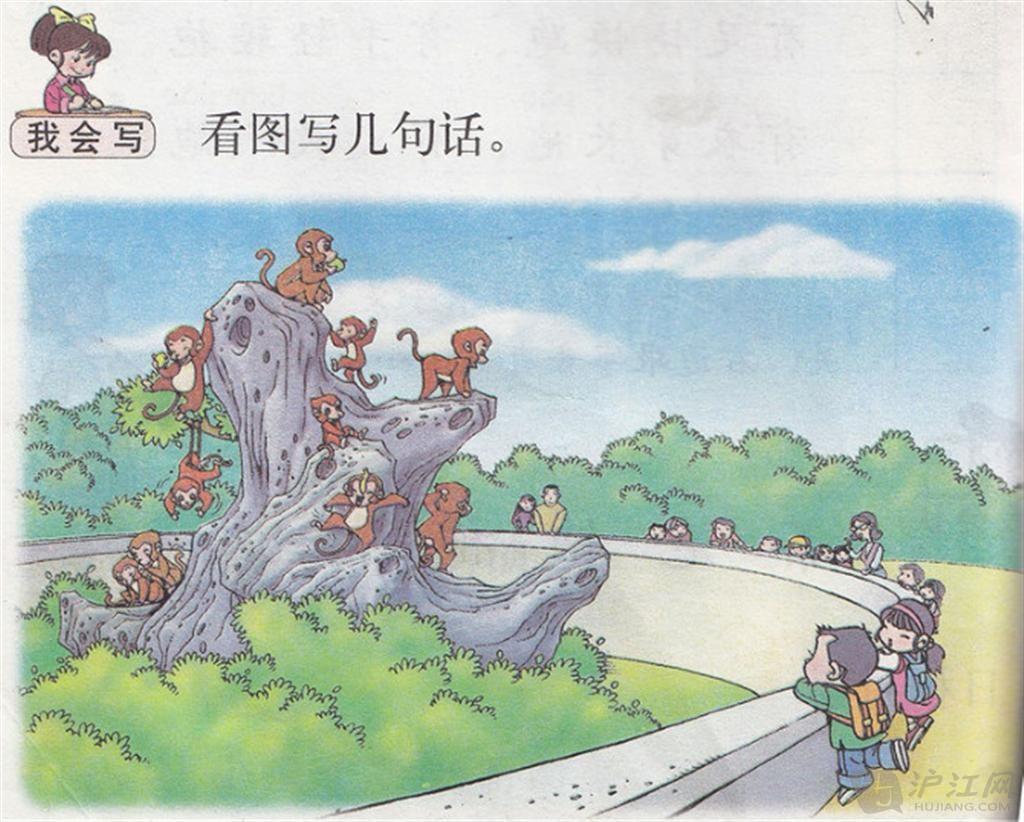 看图写话:猴子的世界