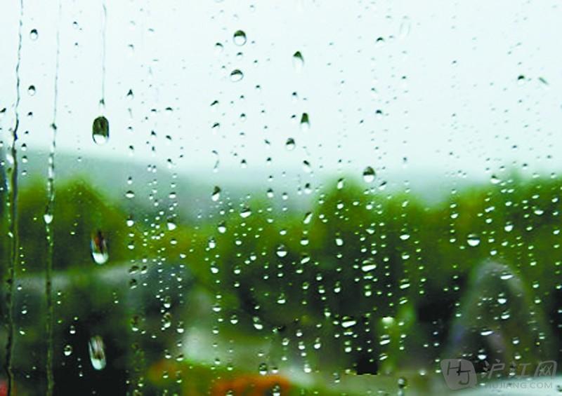 描写雨的作文:雨之随想