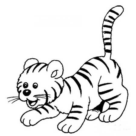 老虎简笔画:与虎谋皮