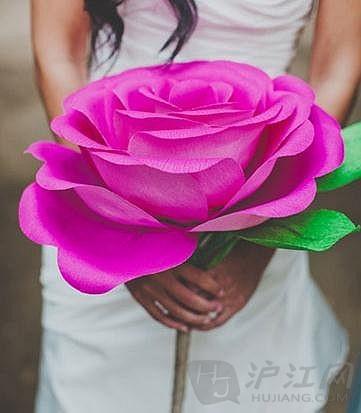 手工折纸玫瑰花 最简单的玫瑰花折法