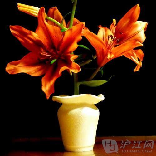 泡沫塑料杯子变花瓶【一次性纸杯手工制作】