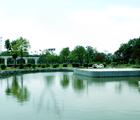 描写公园的作文