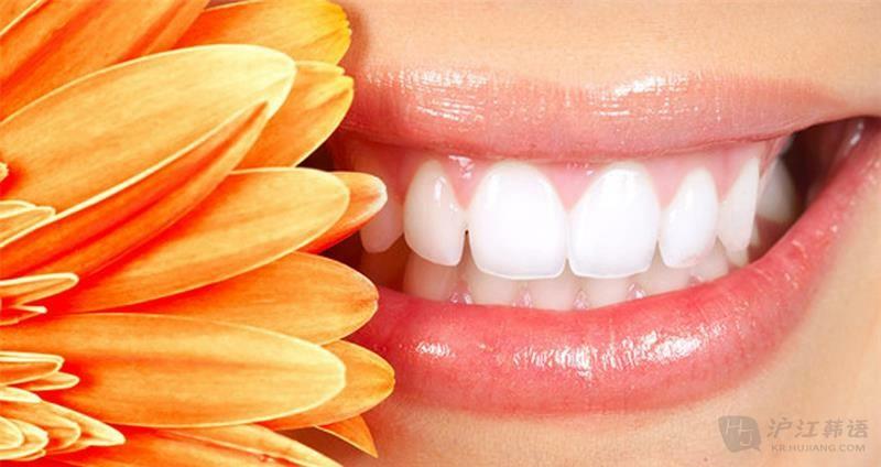 口腔牙齿结构图片