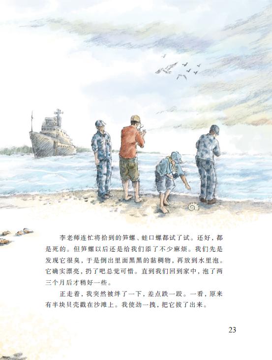 【美丽的西沙群岛·珊瑚岛狩猎】大海拾贝