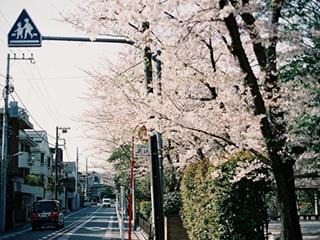 日本研究生留学申请5大问题